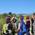 Alcalà-Alcossebre presenta el calendari d'activitats turístiques 2021